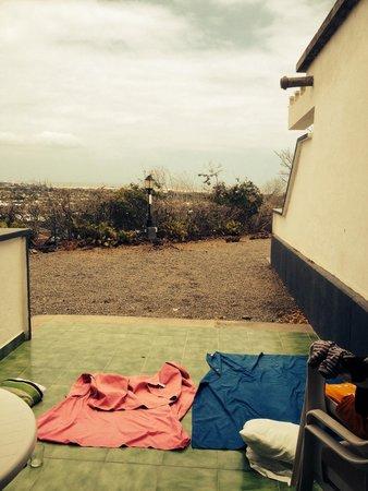 Bungalows Vista Oasis Apartments: The terrace.