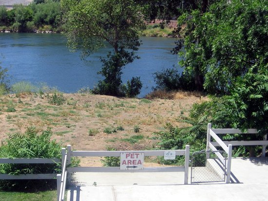Travelodge Red Bluff: pet area with river front