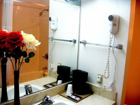 Riverbank Inn : bathroom