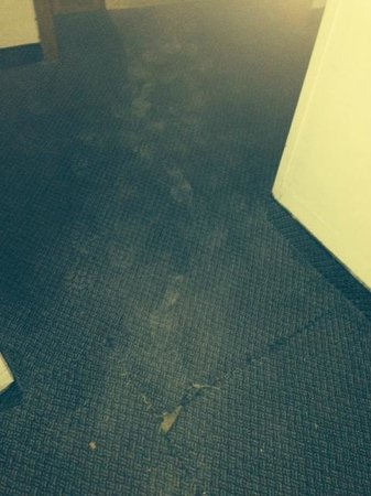Hotel Fortina : Cement tramped into carpets outside our room