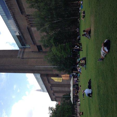 Tate Modern : Tate garden