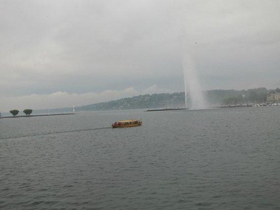Lac Léman (Lac de Genève) : Jet d'Eau
