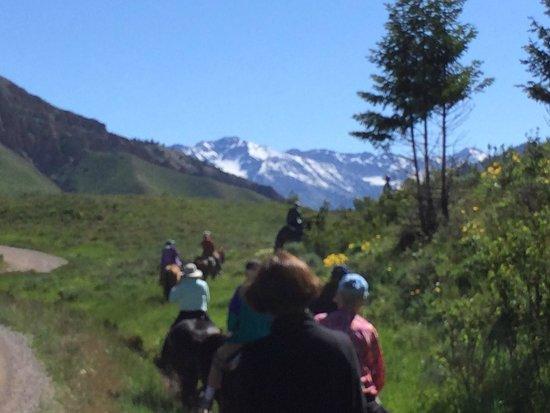 Jackson Hole Trail Rides: The views, the views!