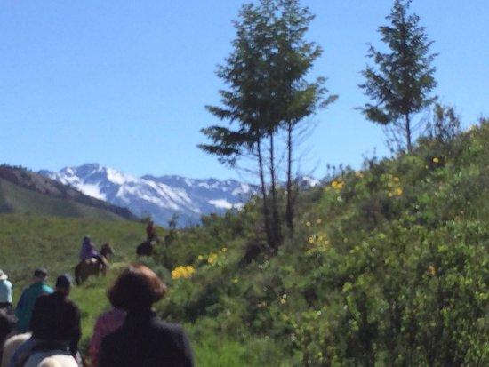 Jackson Hole Trail Rides: More views...
