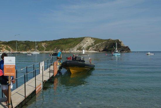 Lulworth & Weymouth RIB Rides: Fantastic captain