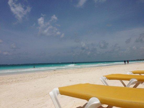 El Paraiso Tulum: Gorgeous beach!