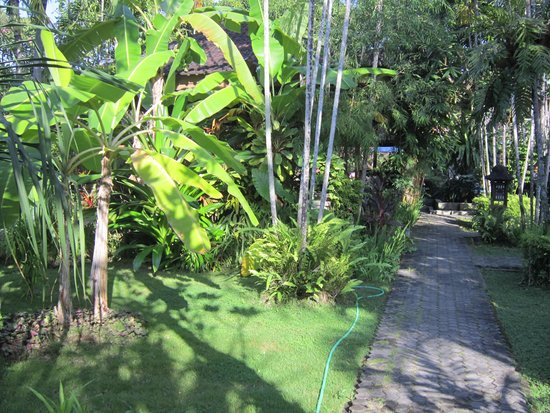 Bumi Ayu Bungalows: Beatiful tropical gardens