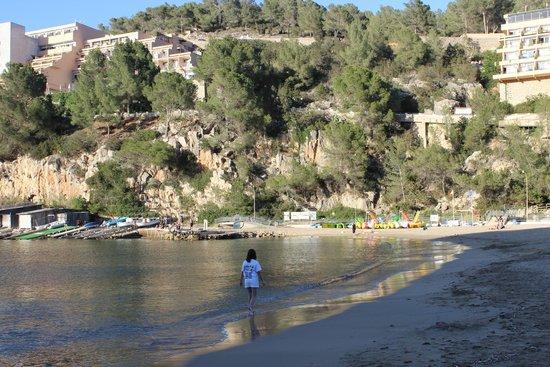 San Miguel Beach Club: san miguel bay