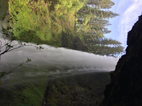 Silver Falls State Park: Silver Falls