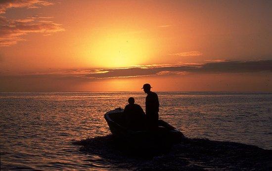 Pontalaia Apartamentos Turisticos: Pesca