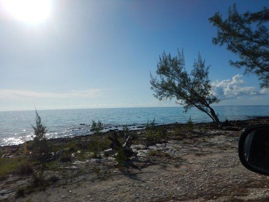 Tarpum Bay: Road drives close to the coast through town.