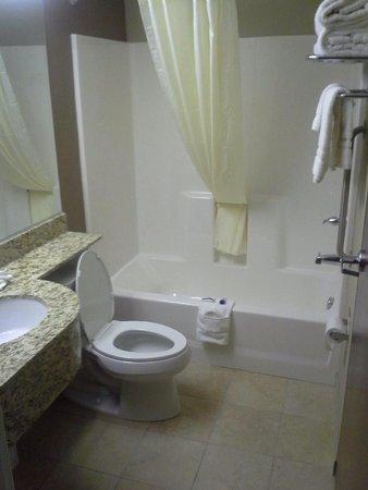 Microtel Inn & Suites by Wyndham Sylva Dillsboro Area : Bathroom