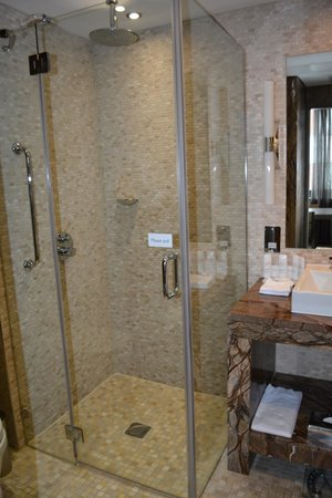 Radisson Blu Royal Hotel, Dublin: walk in shower