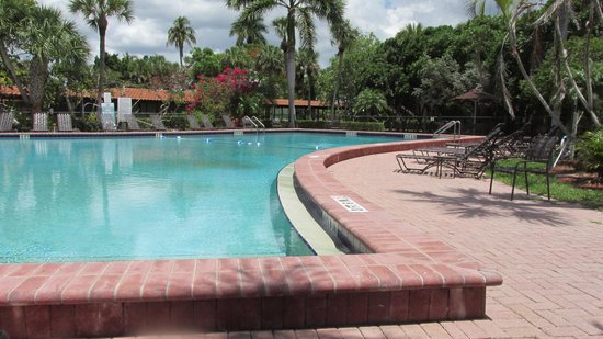 Port of the Islands Everglades - Adventure Resort: Beautiful pool and grounds