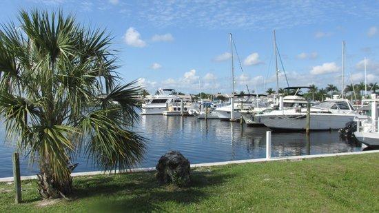 Port of the Islands Everglades Adventure Resort: Marina