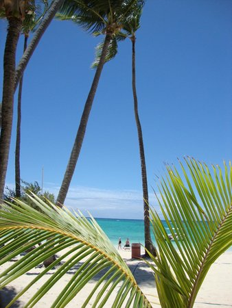 Grand Palladium Punta Cana Resort & Spa: Beach...