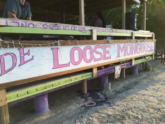 De Loose Mongoose: Mongoose Beach Bar
