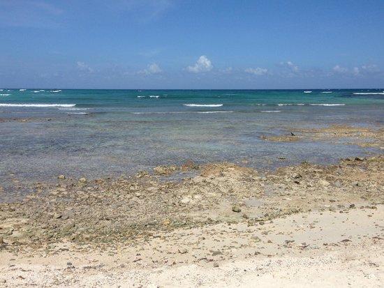 Bel Air Collection Xpu Ha Riviera Maya: No beach......beautiful but reefy