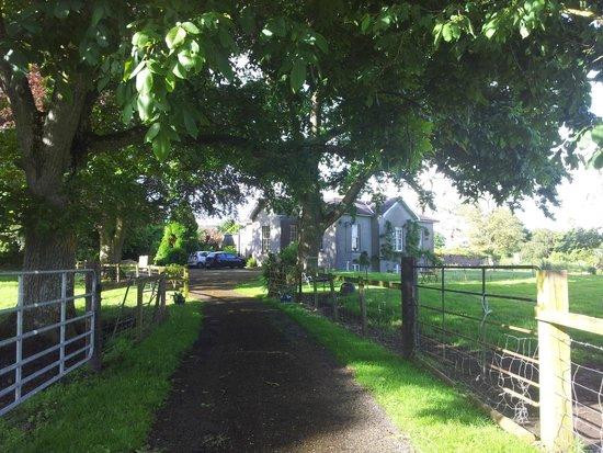 Glendine House: top of driveway
