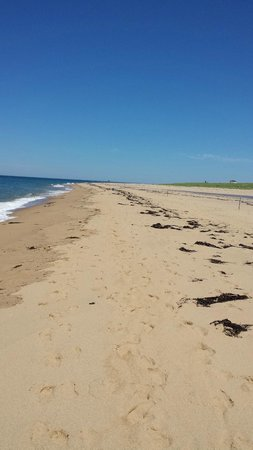 Cape Cod National Seashore: Cape Cod National Sea Shore