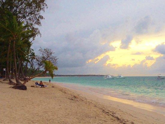 Vista Sol Punta Cana : Gorgeous beach!