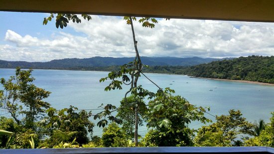 Jinetes de Osa Hotel : View from superior suite #11!