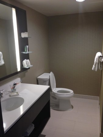 Hilton Chicago: Updated bathroom