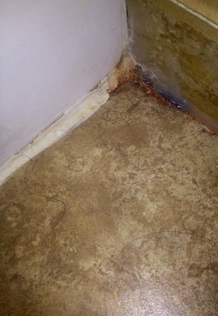 Ramada Strasburg: The corner of our bathroom behind the door. Note disgusting staining and all of the black hair o