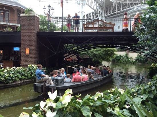 Opryland Hotel Gardens: Inside the hotel!