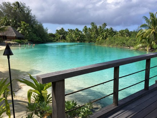 Four Seasons Resort Bora Bora: The hotel lagoon, awesome snorkeling, great fish and coral