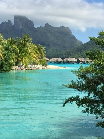 Four Seasons Resort Bora Bora: Amazing.