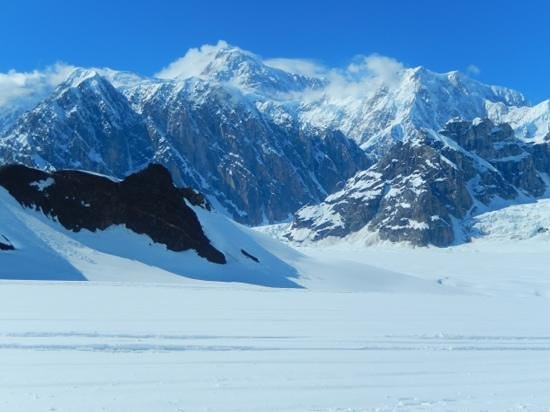 Alaskan Tour Guides Day Tours: Mt.McKinley