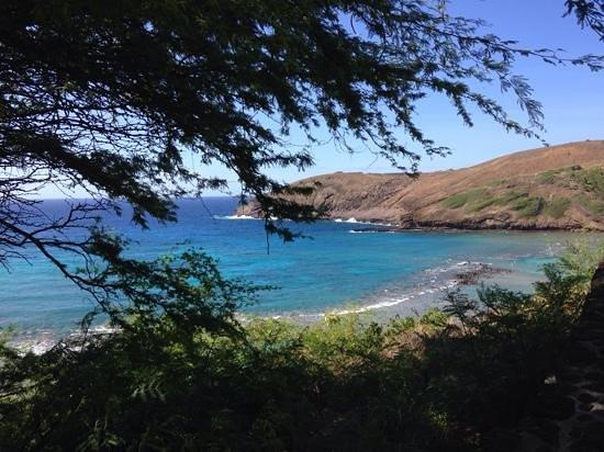 Oahu Grand Circle Island Tour: Hanama Bay