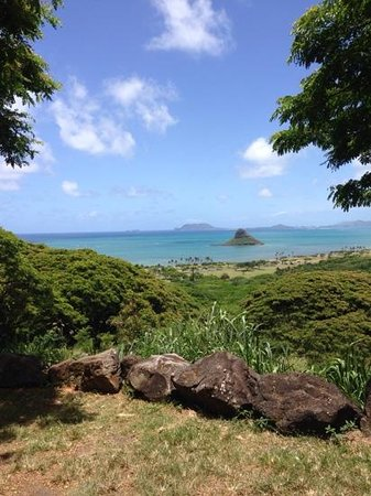 Oahu Grand Circle Island Tour: view from the ranch