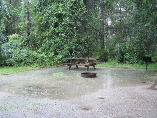 Stephen Foster Folk Culture Center State Park: campsite under watercampsite under water