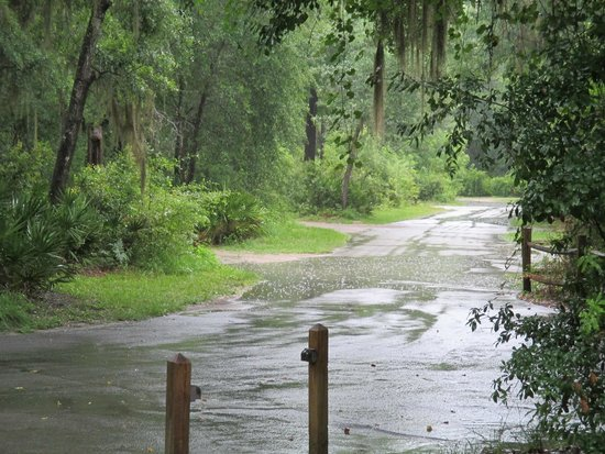 Stephen Foster Folk Culture Center State Park: campsite under water