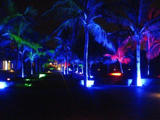 Al Bustan Palace, A Ritz-Carlton Hotel : Gardens