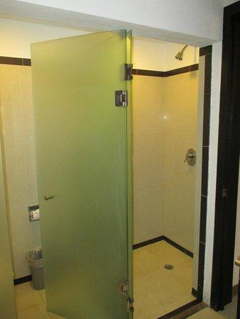 Sandos Playacar Beach Resort : Glass enclosed shower..very nice