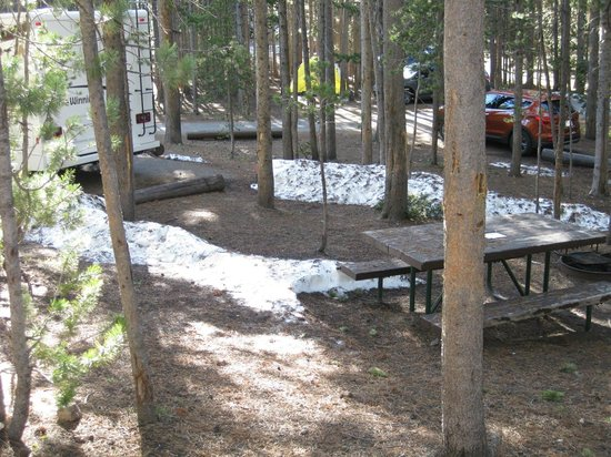 Canyon Village Campground : Snow in June!!