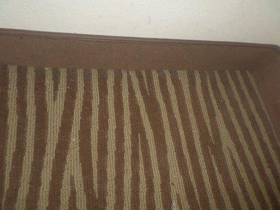 Red Roof Inn Cincinnati Airport: un-swept carpet