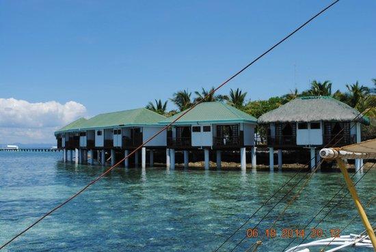 Cebu Island Resorts Tripadvisor