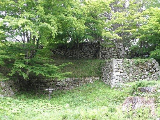 Tsuwano Castle: 静かにたたずむ石垣
