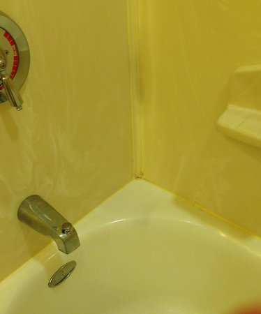 Embassy Suites by Hilton Omaha-La Vista/Hotel & Conference Center: Mildew/ Mold in shower
