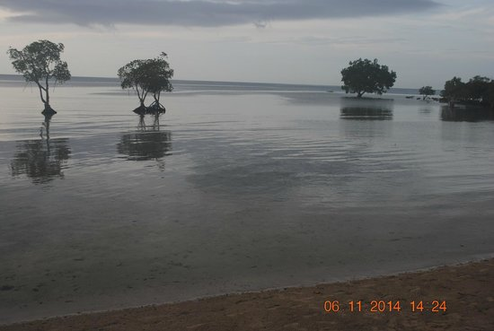 Microtel by Wyndham Puerto Princesa: High Tide
