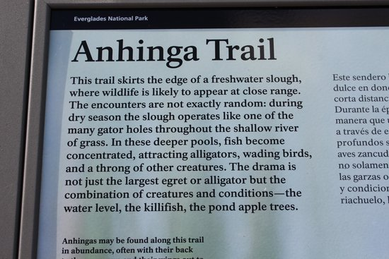 Anhinga Trail: sign