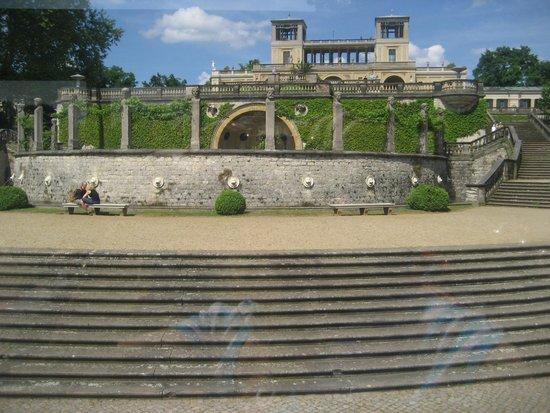 Parque Sanssouci: Part of vineyard