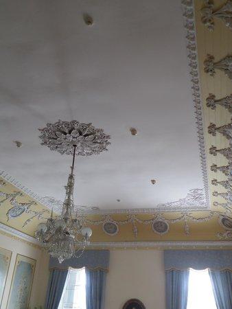 Devon House : Ceiling