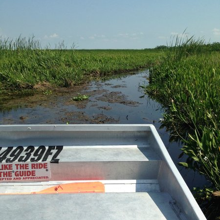 Airboat Adventures : The Bayou