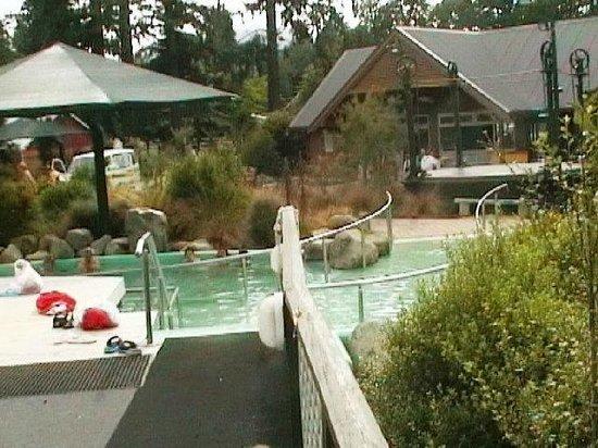Hanmer Springs Ski Area: hanmer springs bath