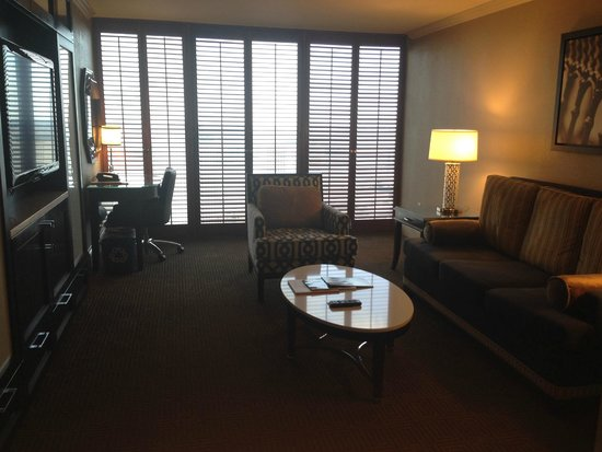 Sheraton New Orleans Hotel: living room